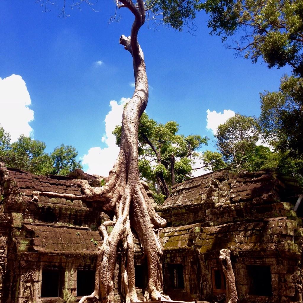 Cambodia2017 Angkor